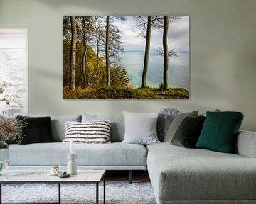 Die Ostseeküste auf der Insel Rügen im Herbst von Rico Ködder