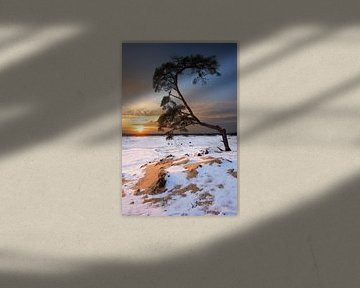 Sneeuw en zand van Mark Leeman