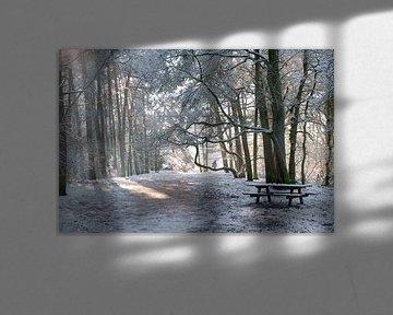 Soestduinen in de sneeuw