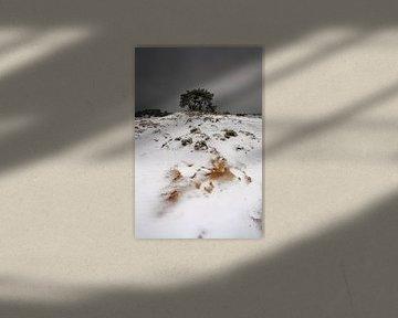 Sneeuw en Zand III von Mark Leeman