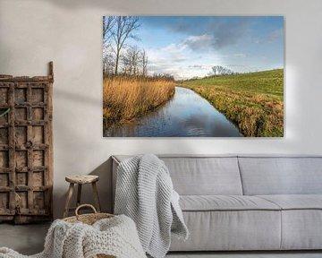 Bunte Landschaft entlang dem Deich von Ruud Morijn