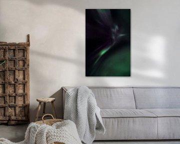 Polares Licht oder Nordlichter von Hans Kool