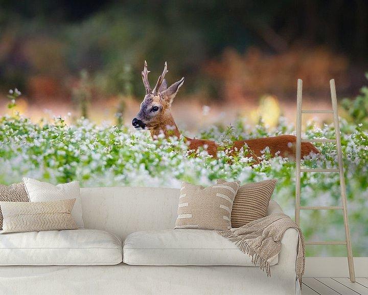 Sfeerimpressie behang: reebok in een veld met boekweit van Pim Leijen