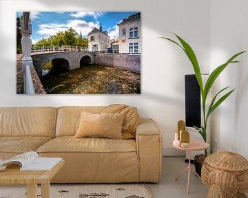 Burgwal en oorgat,  stadsgracht Kampen van Fotografiecor .nl