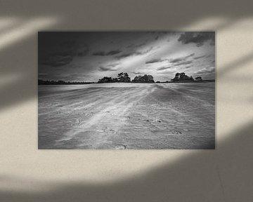 Zandverstuiving bij Kootwijkerzand van Incanto Images