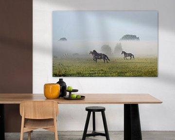 Friese paarden in de mist von Jitske Van der gaast