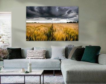 Gewitterwolken über die Landschaft von Fotografiecor .nl