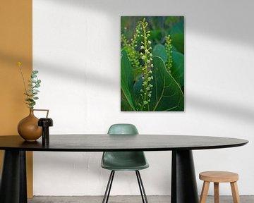 Bloempjes in het mooie groen von Silvia Weenink