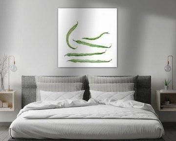 Grüne Bohnen, Ein Aquarell von Studio Heyki