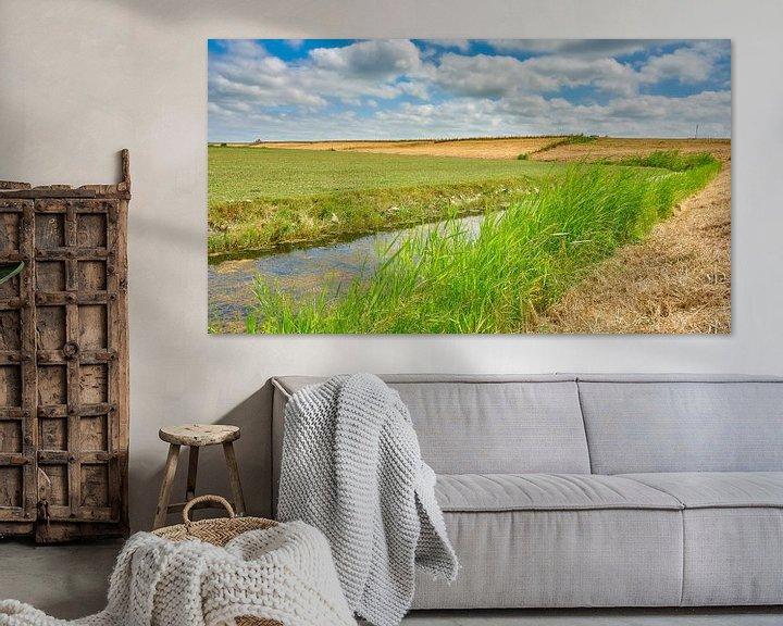 Sfeerimpressie: zomerlandschap Noord-Holland van eric van der eijk