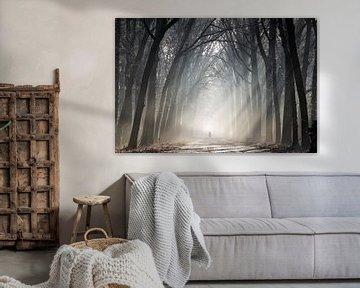 Fietser in een bos met zonnestralen von Martin Podt
