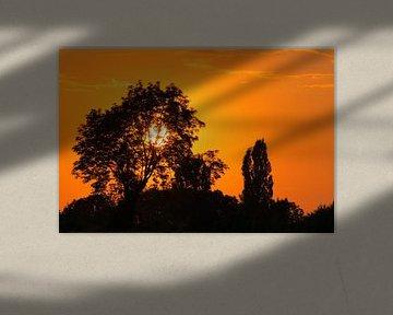 Sunset van Roger Gulpers