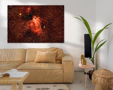 Omeganebel -  Messier 17