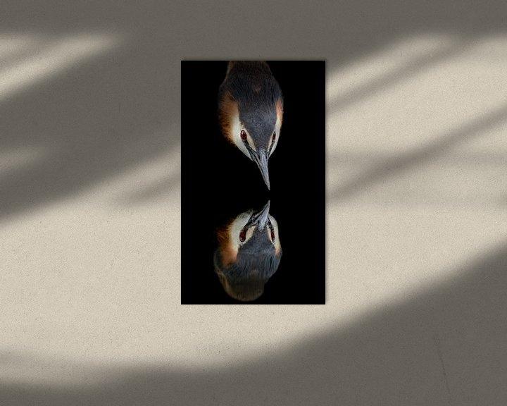 Sfeerimpressie: Fuut  Spiegelbeeld van richard evers