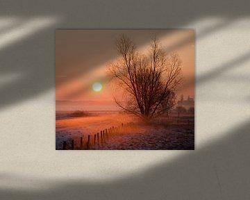 Morning sun van Michiel Stam
