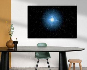 Stern Sirius - Alpha Canis Majoris von Monarch C.