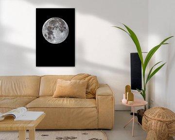 pleine lune sur Monarch C.