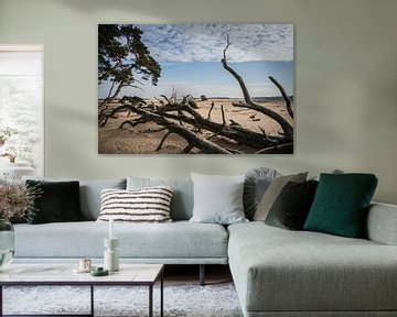 Veluwe zandverstuiving landschap van Mayra Pama-Luiten