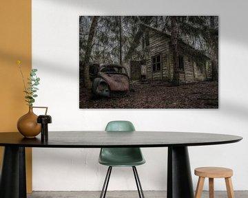 Beetle in the woods van Maikel Brands