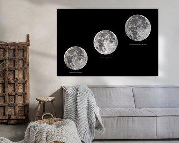 pleine lune en différentes tailles sur Monarch C.