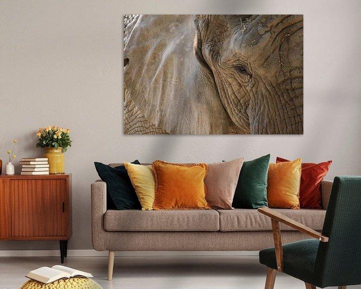 Sfeerimpressie: Olifant close up van Natascha Nabuurs