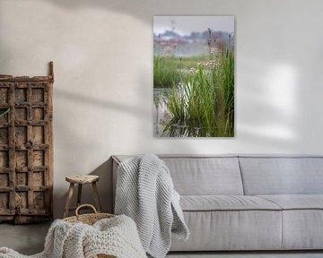 Zwanenbloem van Yvonne van Leeuwen