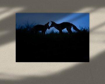 zonsondergang sur Pim Leijen