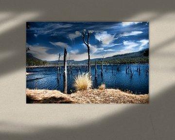 Lake Pedder van René Kempes