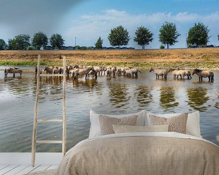 Sfeerimpressie behang: Konik Paarden in de rivier. van Brian Morgan