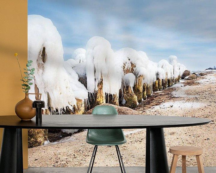 Beispiel fototapete: Winter an der Küste der Ostsee bei Kühlungsborn von Rico Ködder