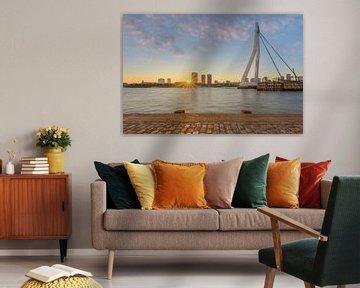 Erasmusbrücke in Rotterdam von Michael Valjak