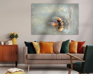 Schwimmender Grebe von Rietje Bulthuis