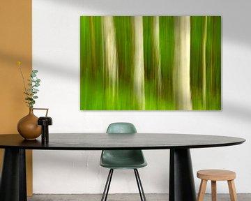 Waldzauber von Kirsten Warner