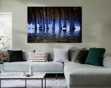 Blauwe waterbos van ZEVNOV .