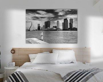 Kop van Zuid, Rotterdam van Domenique van der Horst