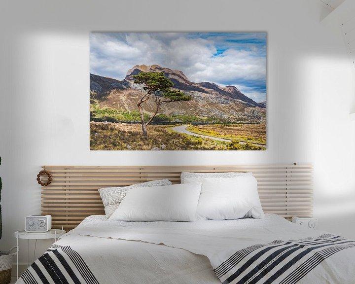 Beispiel: Kleurig landschap in de Schotse hooglanden von Rob IJsselstein