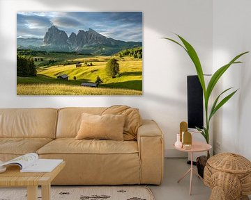 The Alpe di Siusi in South Tyrol in the first morning light van Michael Valjak