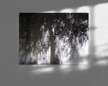 Tree Magic 194 von MoArt (Maurice Heuts)
