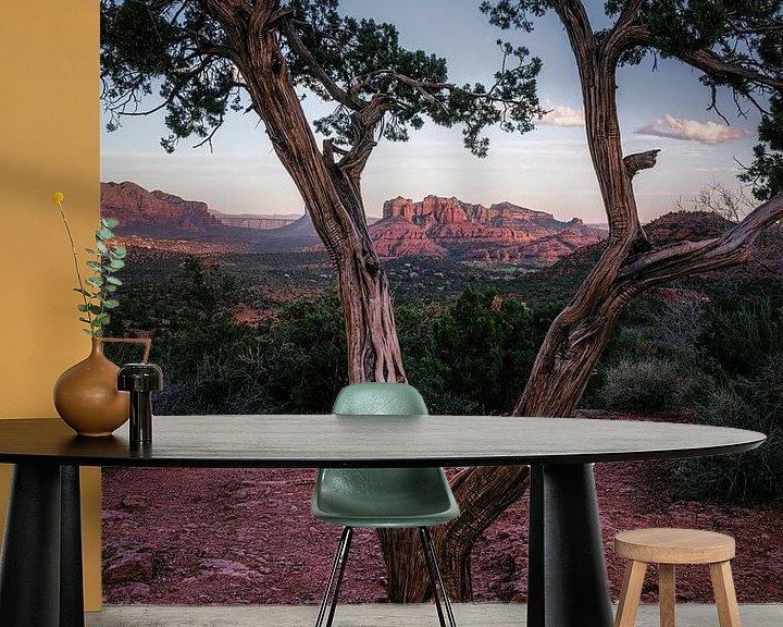 Sfeerimpressie behang: Jeneverbesboom venster van Joris Pannemans - Loris Photography