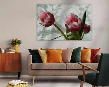 Tulpen in de keuken von Alise Zijlstra