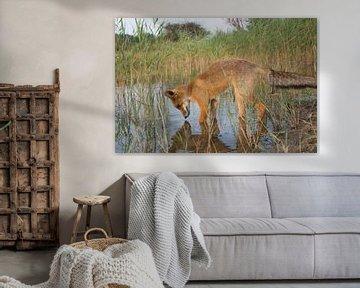 Spiegelbild ... Sagen Sie mir... von Yvonne van der Meij