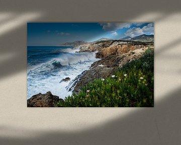 Corsica von Johan Vet