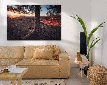 Le contact du soleil sur Joris Pannemans - Loris Photography