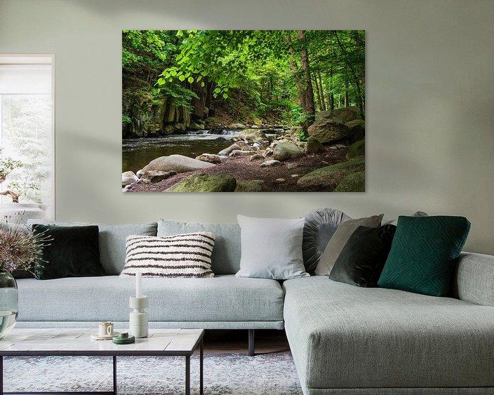 Sfeerimpressie: Landscape with river in the Harz mountains, Germany van Rico Ködder