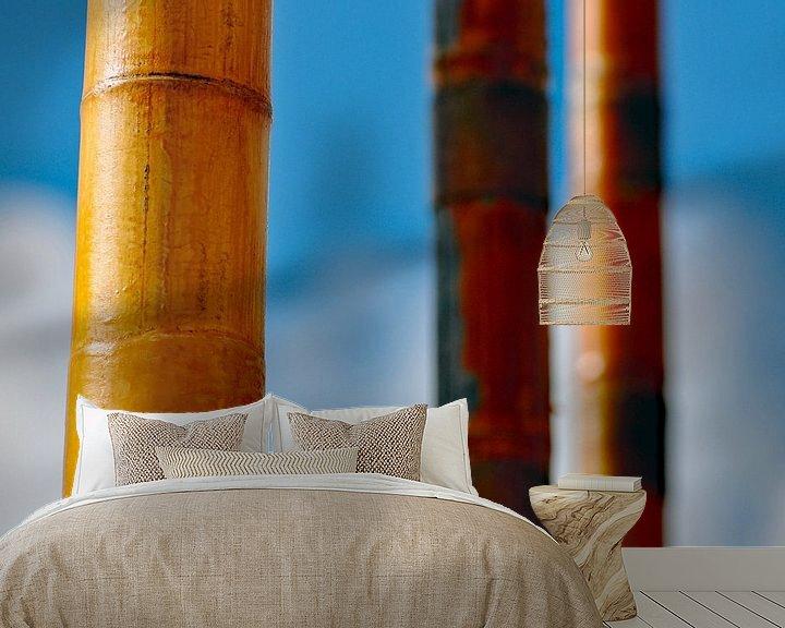 Impression: Bambou sur Zeeland op Foto
