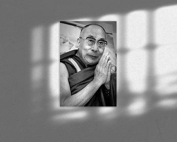 Dalai Lama van Patrick van Emst