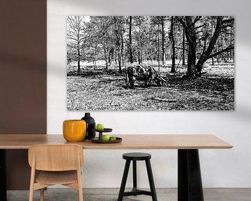Schotse Hooglander von PictureWork - Digital artist