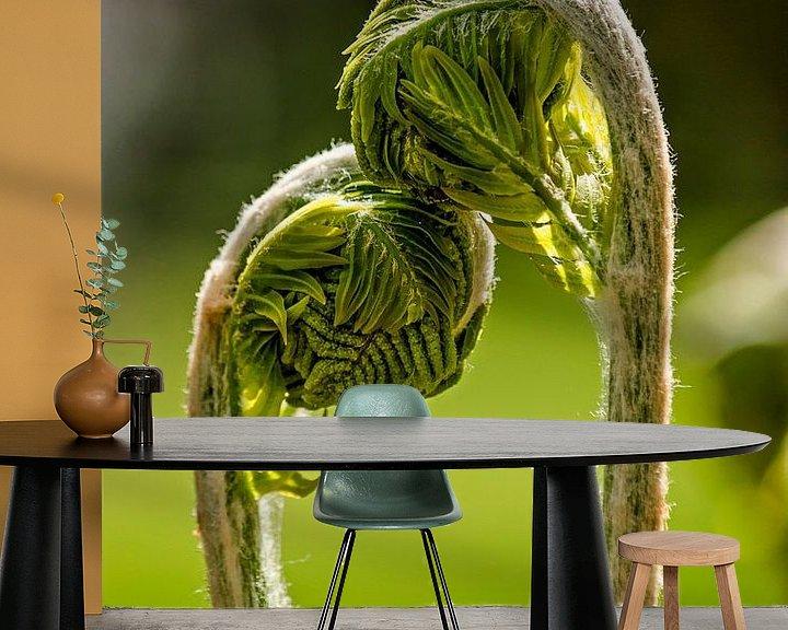 Sfeerimpressie behang: Young ferns in love van Frans Blok
