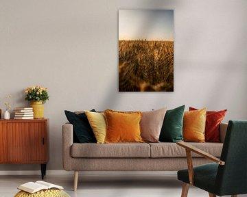 Golden Hour (Gouden uur) van Anna Groenia