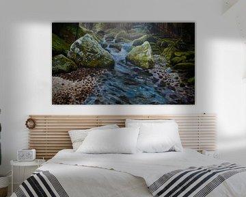 bossen, Mos in Frankrijk, riviertje, water, cascade van sandra de jong